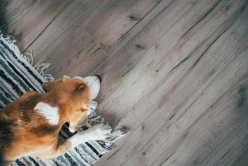 a dog walking on a rug that is laying on vinyl flooring
